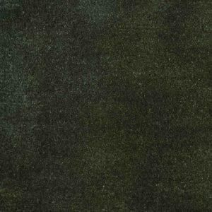 Foret-noire